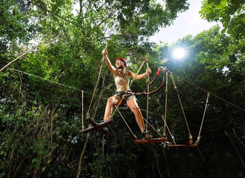 Howler Monkey   Xavage   Mexico Destination Club