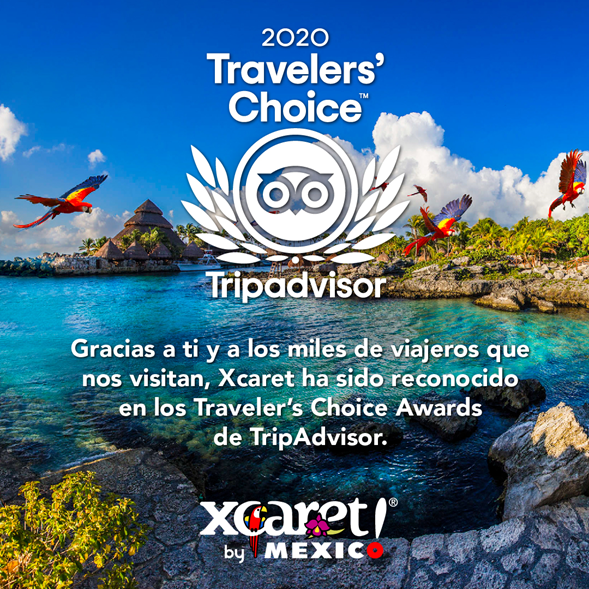Trip Advisor | México Destination Club