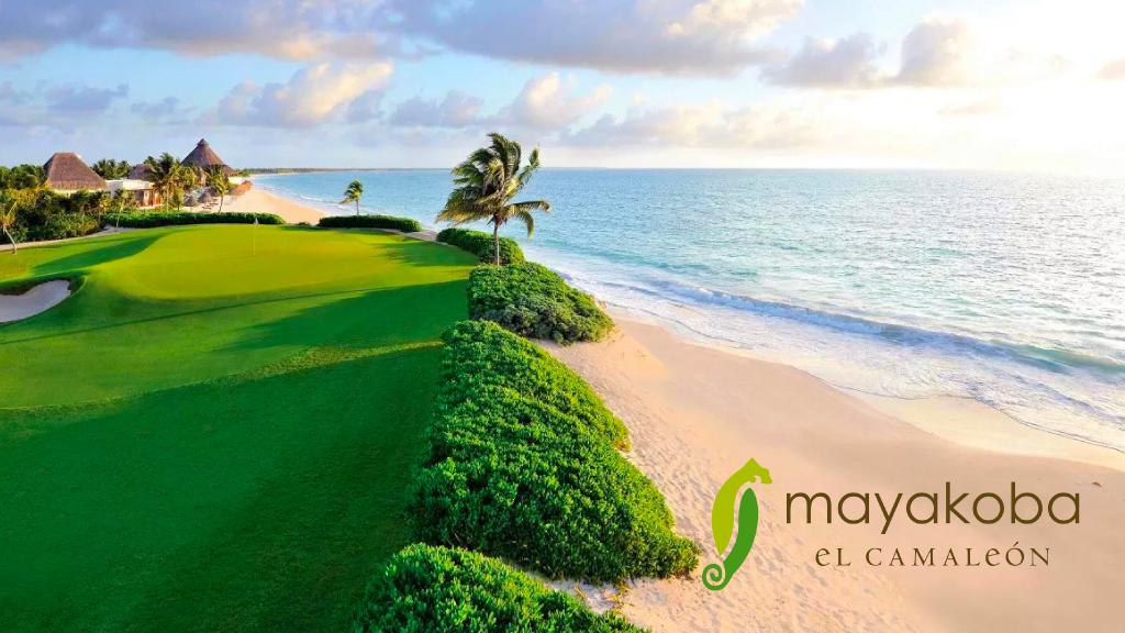 Torneo de Golf en Mayakoba   México Destination Club