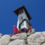Foto Xerro Xelfie - Hotel Xcaret Mexico - Mexico Destination Club